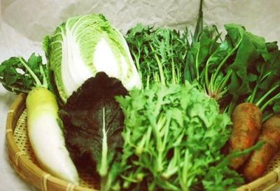 和歌山の野菜セット8品目